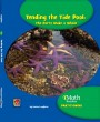 Tending the Tide Pool: The Parts Make a Whole (Level A) - Paperback