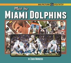 Meet the Miami Dolphins - ebook