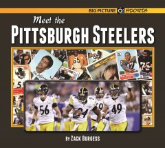 Meet the Pittsburgh Steelers - eBook-Library