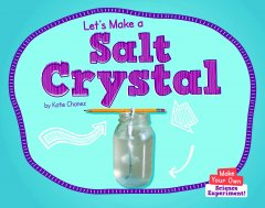 Let's Make a Salt Crystal - Paperback