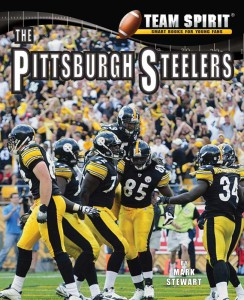 Pittsburgh Steelers, The - eBook-Library